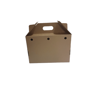 Custom Cardboard Carry Boxes