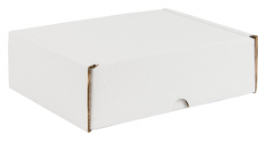 White Postal Packaging Boxes 01